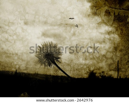 Image of a dandelion from below with birds flying in the sky