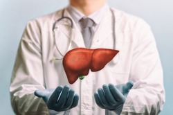 Image of a doctor in a white coat and liver above his hands. Concept of healthy liver and donation.