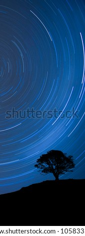 Image of a isolated tree silhouette on a hill with a blue background at night with startrail, as a banner for website