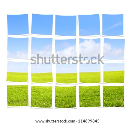 Image of a photograph cut into pieces