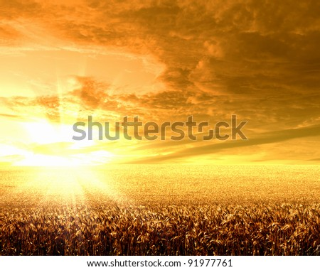 Image of a rural landscape under shining sunlight #91977761