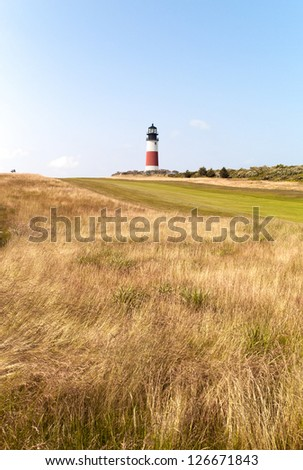 Image of a vineyard with lighthouse in the background.