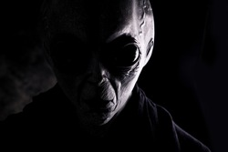 Image of an alien. Grey kind humanoid from an other planet portrait series.