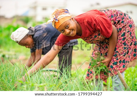 image of beautiful African woman and a boy in green field with the boy bit blurred-black woman smiling-farm concept
