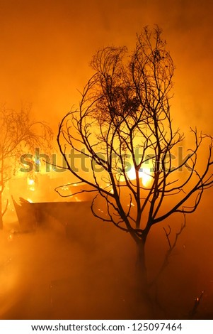 Image of Burned tree and abandoned house in the city at dusk