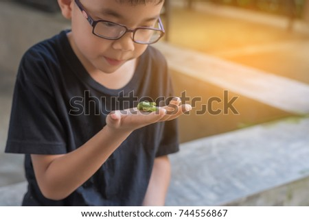image of cute young Asian boy holding a green worm caterpillar .