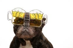 image of dog glasses white background
