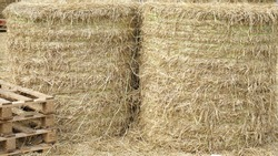 Image of dried straw rolls