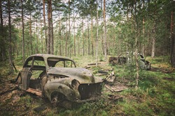 Image of forest cemetery of old, rusty cars.