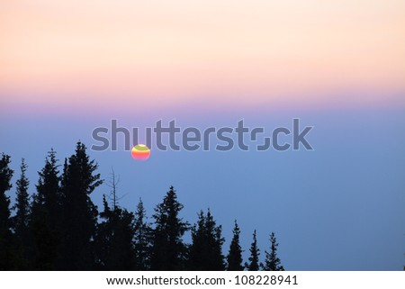 Image of forest silhouette against the sunset.