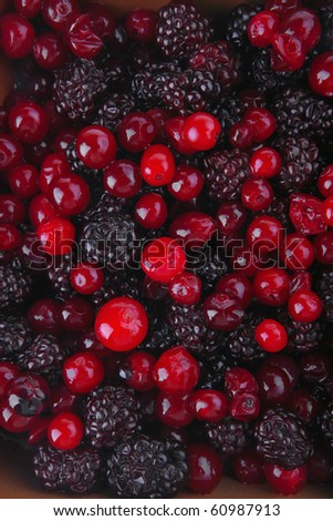 image of fresh raw wild red and black berry