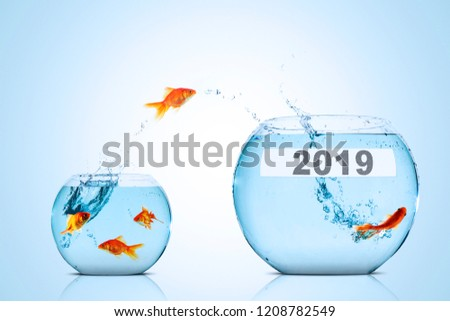 Image of golden fish leaping to larger aquarium with numbers 2019 #1208782549