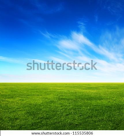 Image of green grass field and bright blue sky #115535806