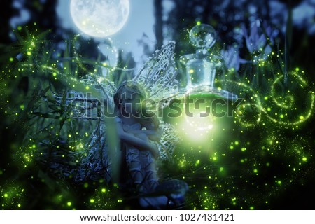 image of magical little fairy sitting in the night forest #1027431421