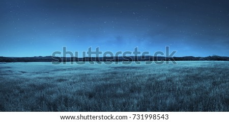 Image of meadow landscape at night time ストックフォト ©