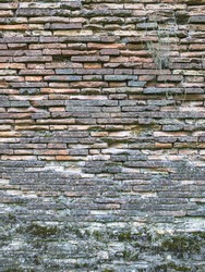 Image of old brick wall with moos texture