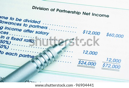 Image of Partnership Net Income, percent