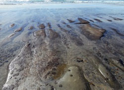 Image of reef and tide pools filling in at low tide