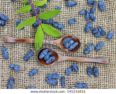 Image of ripe honeysuckle berries in wooden spoons, close-up