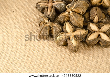 Image of sacha inchi peanut seed on brown sack background
