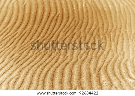 image of sand dunes in the background
