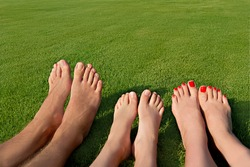 Image of several legs lying on the grass and resting
