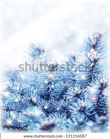 Image of snowy fir tree background, abstract natural backdrop, pine tree branch covered hoar, coniferous twig border, beautiful winter season, New Year greeting card, Christmas holidays