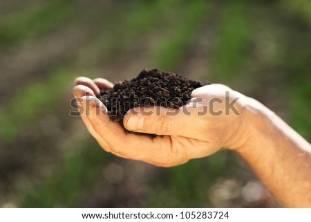 Image of soil in hand
