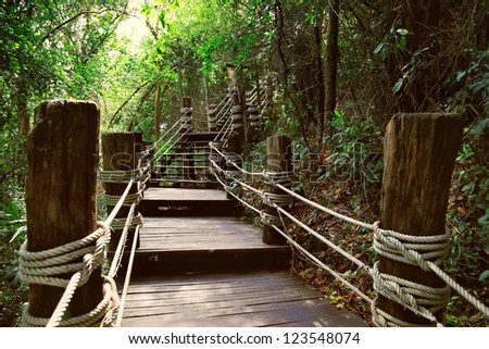 Image of stairway in jungle