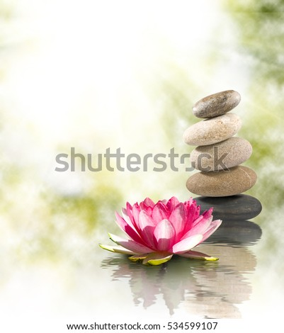 Image of stones and lotus flower on the water. #534599107