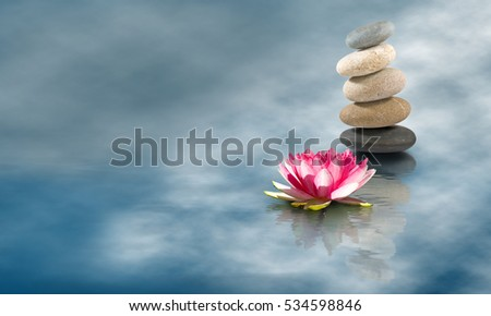 Image of stones and lotus flower on the water closeup #534598846