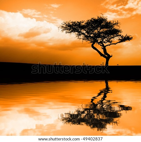 Image of sunset in the African savannah with reflection in water