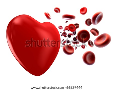 image of the flow of blood and heart