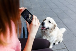 Image of woman on bench photographing dog