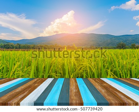 image of wood table in front of rice field and cloudy blue sky in background #507739420