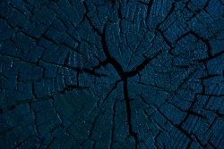 image of wooden stub background