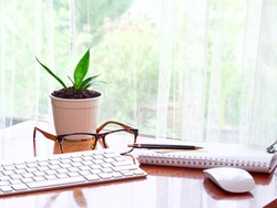Image of working desk computer mouse, notebook, cup of coffee with small plant in white pot on brown wooden table.