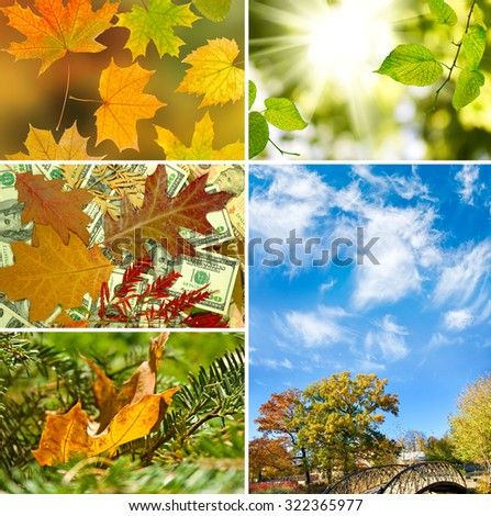 images autumn landscapes close-up - Shutterstock ID 322365977