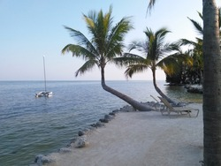 Images From Around Key West Florida