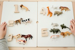 Implement for children to learn counting and recognize  animals. wooden digits from 1 to 5 and wild and domestic animals. Montessori  method for primary school and special needs people