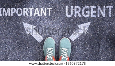 Important and urgent as different choices in life - pictured as words Important, urgent on a road to symbolize making decision and picking either Important or urgent as an option, 3d illustration Stockfoto ©