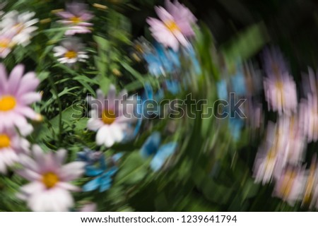 Impression with white, pink and blue flowers. The camera made a rotating motion while taking the picture. Background photo