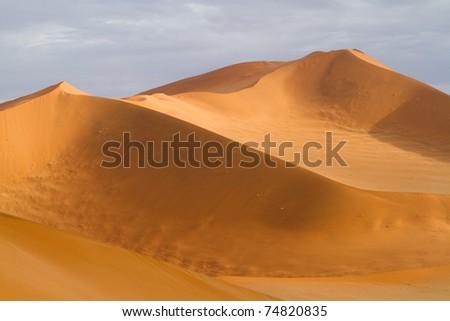 Impressive red sand dunes of the Namib Desert