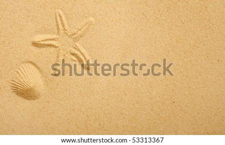 Imprints of seashells in beach sand
