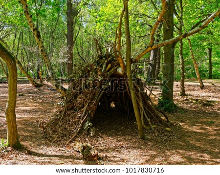 In a clearing in Sherwood Forest is a childs den, made of branches, twigs and fallen leaves.