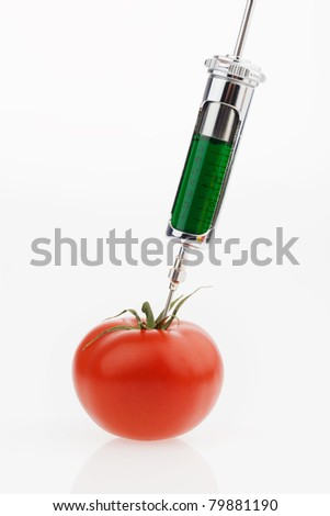 In a tomato, a green liquid is sprayed. Symbolic photo for genetic tomatoes.