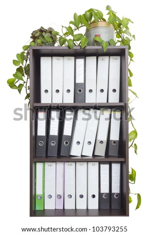 In a wooden office cabinet is  a lot of folders with old  paper mattered accounting files. Indoor plants in pots are in the closet. Isolated