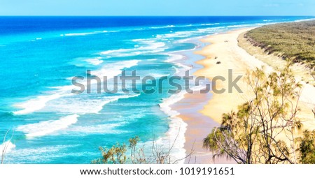 in  australia  the  beach of whitsunday island the tree and the rocks #1019191651
