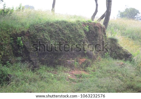 In Nandi Hill there is a sand mountain above that moss and some plants are grown its look like texture and background for the photo shoot of peoples