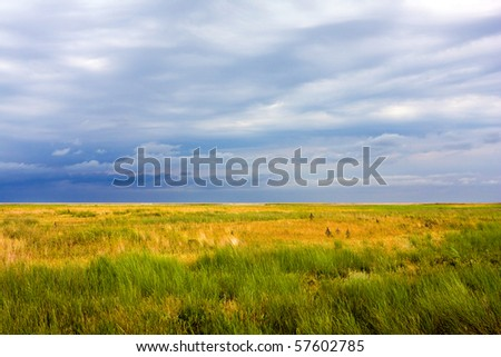 In steppe before thunderstorm